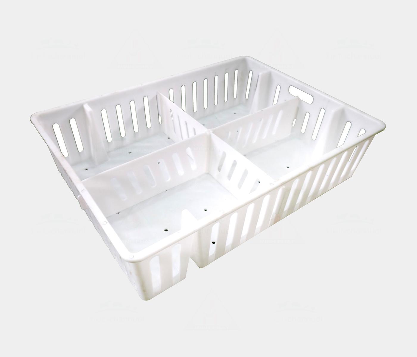 Khay nhựa đựng gà con có vách ngăn - LG15