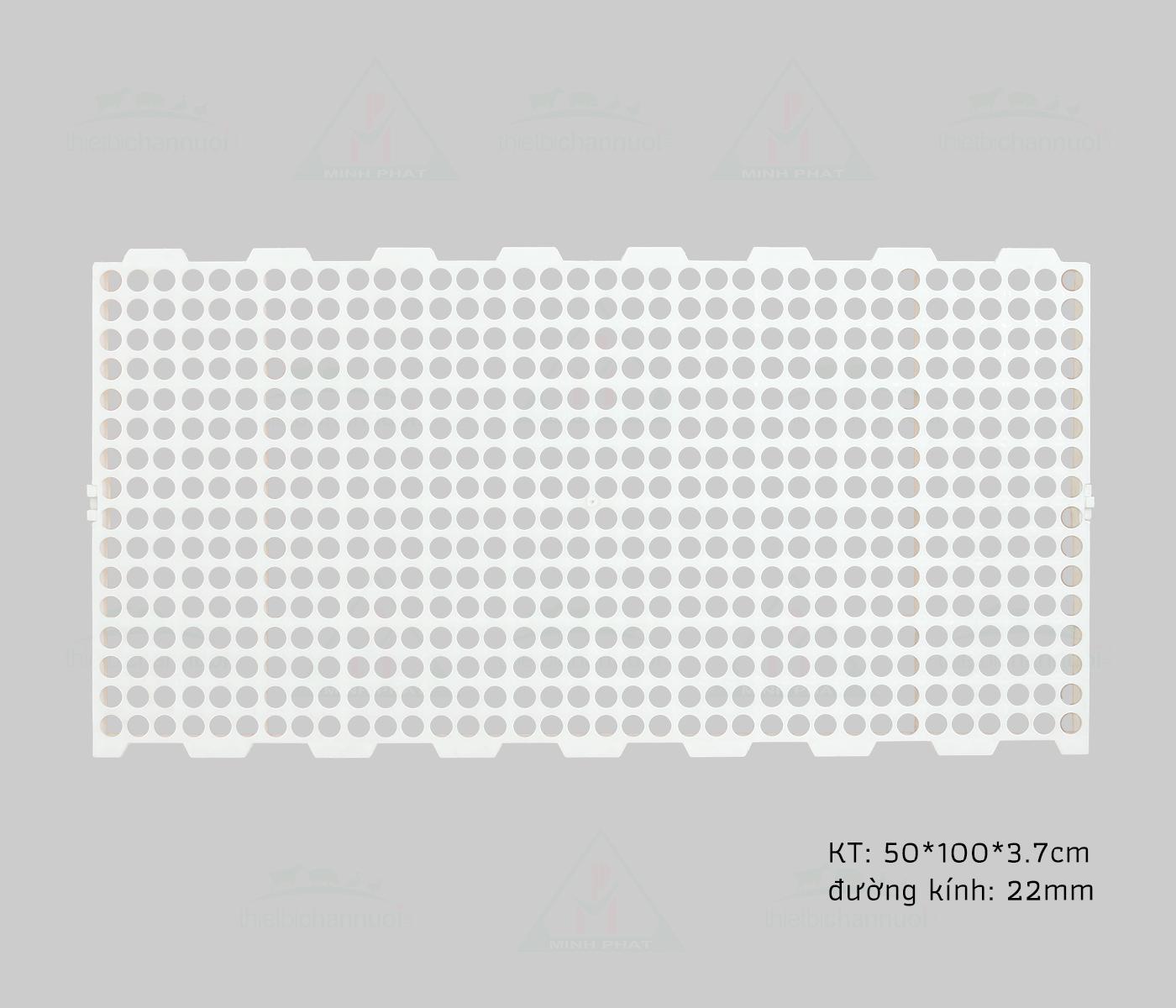Sàn gia cầm 50x100cm lỗ tròn - SN15