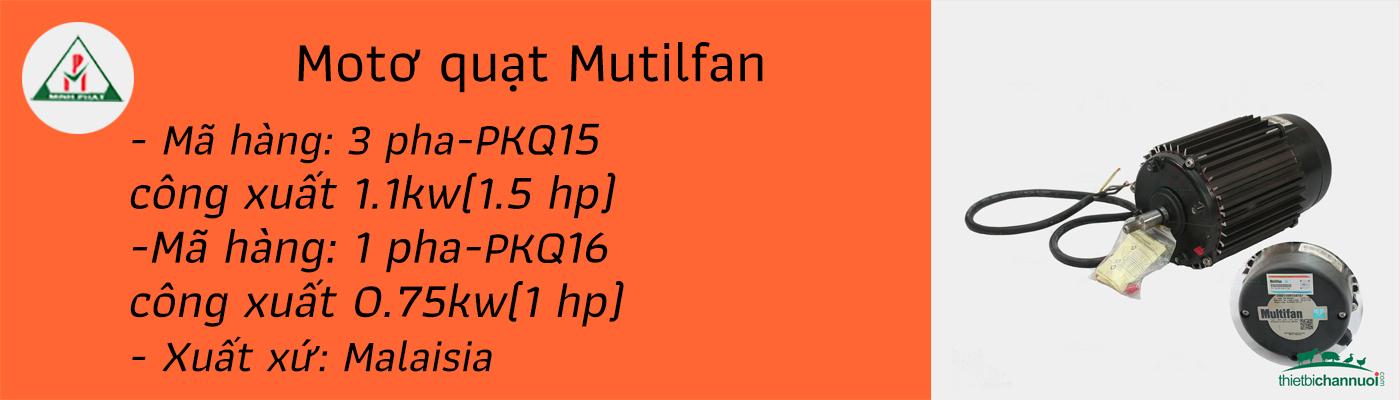 Moto multifan